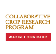 CCRP Farmer Research Networks