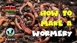 How to make a wormery pt 1