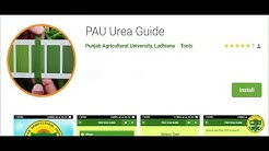Urea have to be used according to…