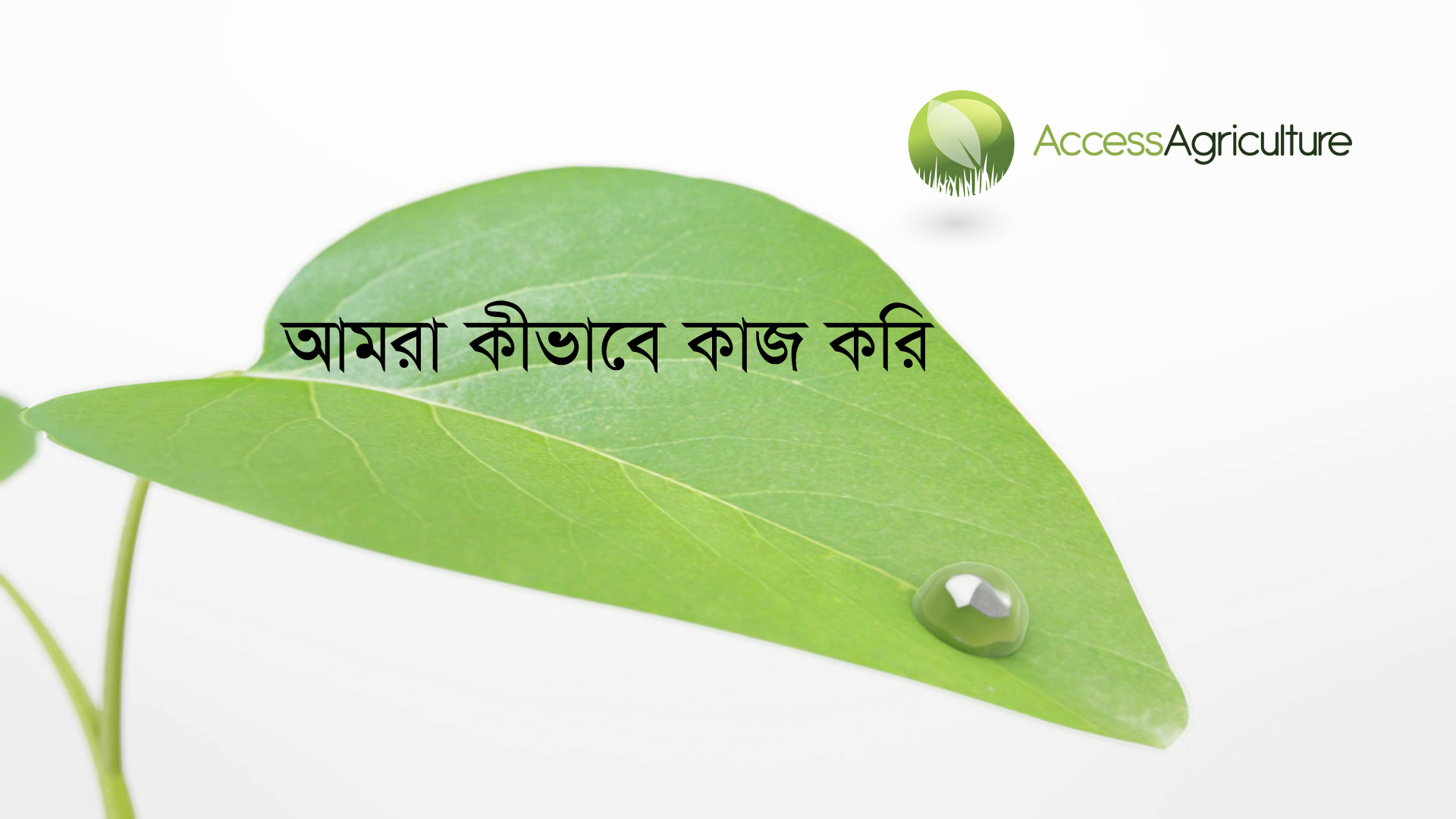 Access agriculture in bangla