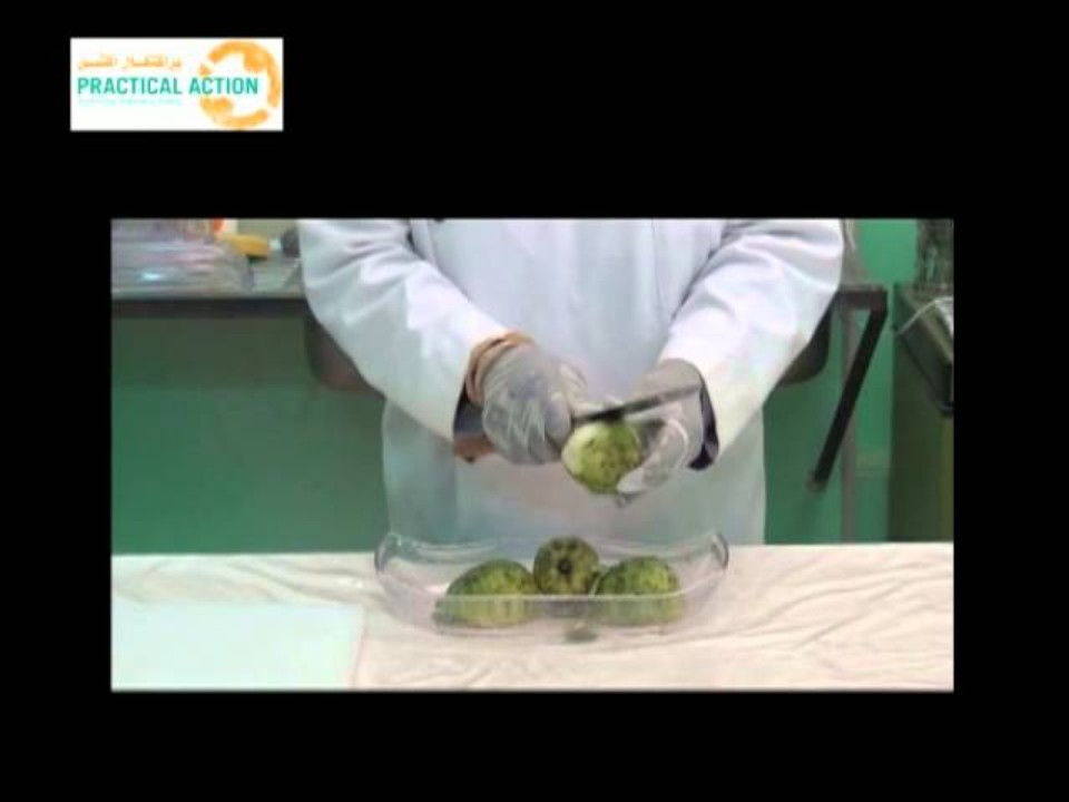 How to dry Guavas -…
