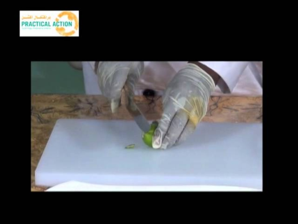 How to dry limes - تجفيف…