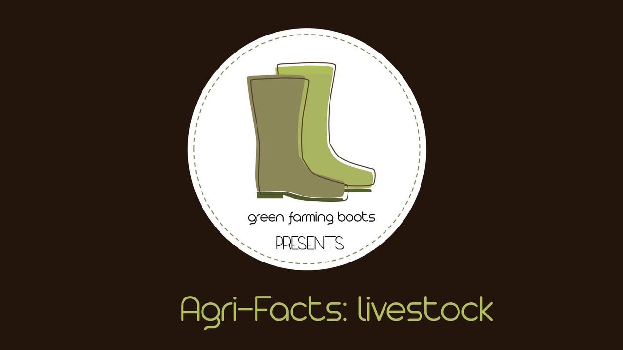 Agri-Facts: livestock