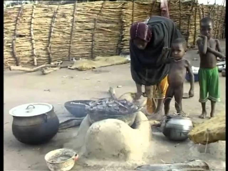 PROLINNOVA Niger: Arid Land,…