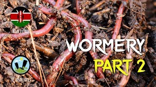How to make a wormery pt 1…