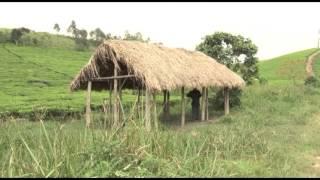 Fairtrade Africa celebrates 10…
