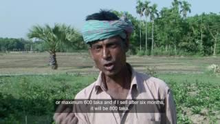 Lalon moves ahead---- documentary…