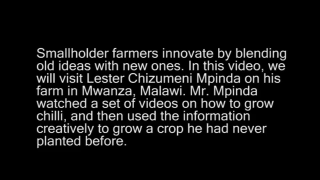 A new crop for Mr Mpinda
