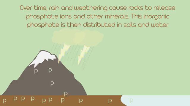 Agri-facts: phosphorus cycle