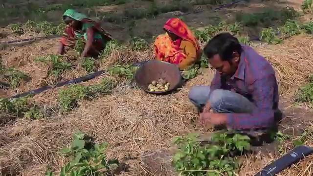 Entrepreneurs for Rural Access - India