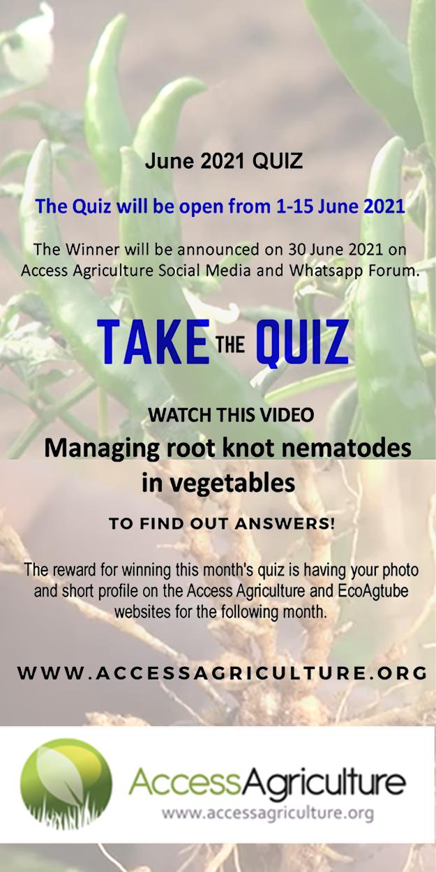 Monthly quiz