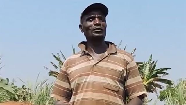 A new crop for Mr Mpinda OLD