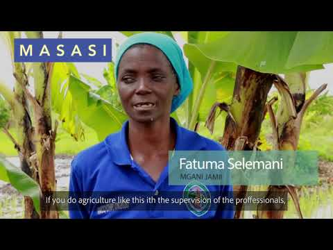 Agriculture as a business