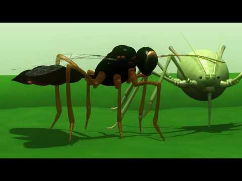 Animation that explains parasitism…