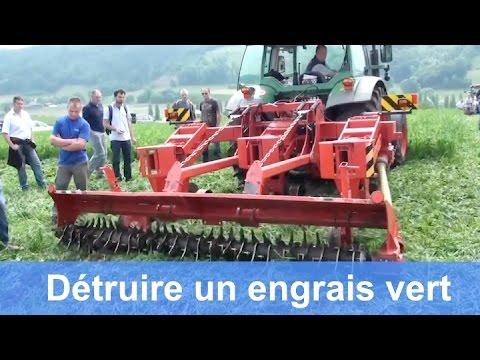 Comment détruire un engrais vert ?
