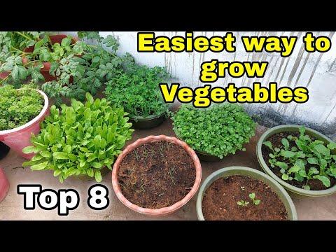 Easiest way to grow Top 8…