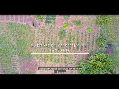 Ecological Organic…
