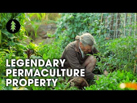 Legendary Australian Permaculture…