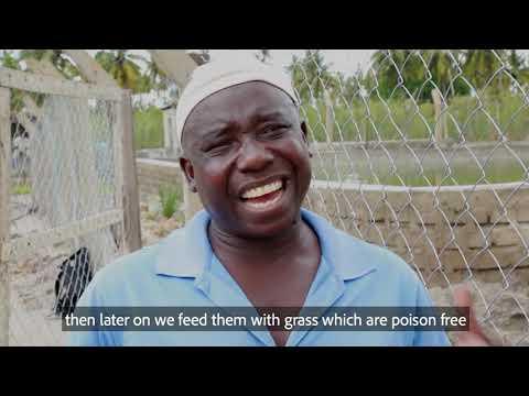 Livestock & Fish Farming