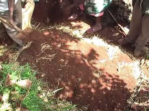 On-farm Composting - Organic…