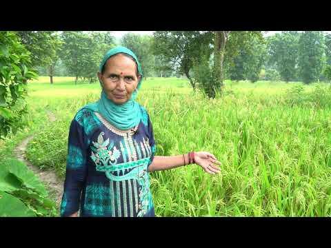 Rait Block, Kangra  Farmers…