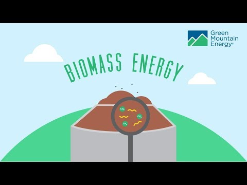 Renewable Energy 101: How Does Biomass E…