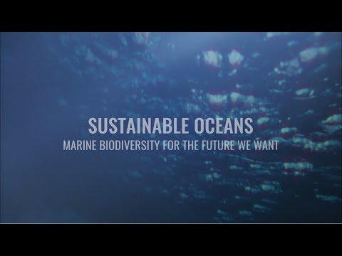 Sustainable Oceans: Marine…