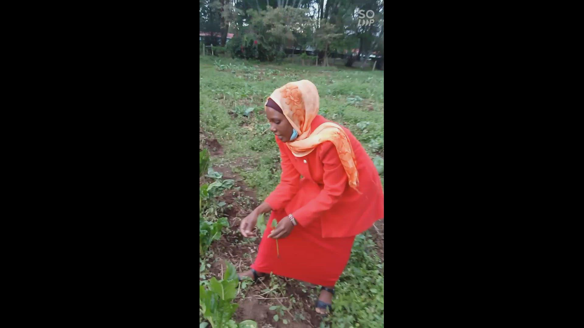 HOW WEEDS AFFECT VEGETABLES