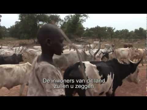 Veehouderij 2.0: de Dinka in Zuid-…
